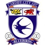 cardiff-city1-150x150