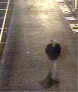 British Transport Police would like to speak to this man after an attempted sexual assault at Ystrad Mynach train station on January 4