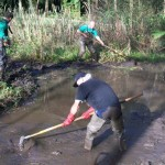 Volunteers get busy clearing one of the ponds
