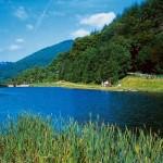 Cwmcarn Lake