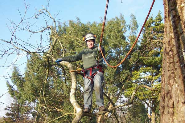 Blackwood man Andrew Stark has set-up his own tree and gardening business