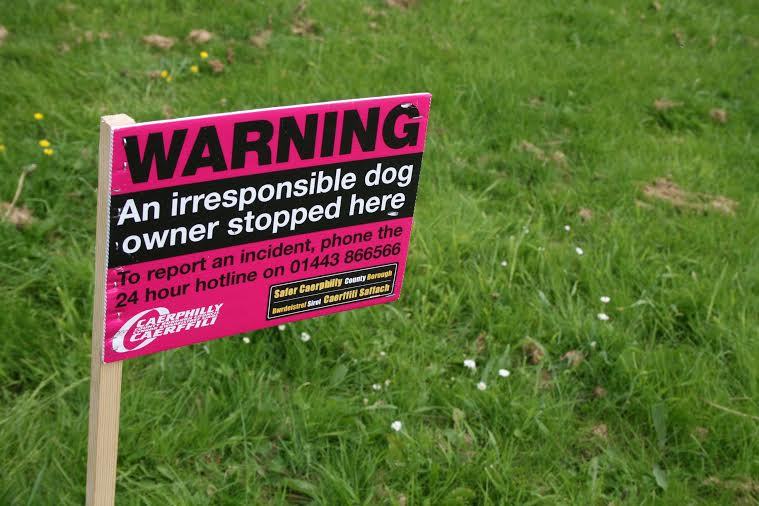 CLEAN IT UP: Dog owners are being flagged up for not cleaning up their pet's mess