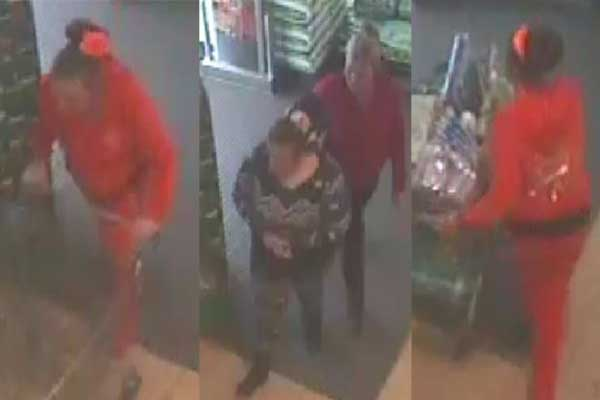 Police would like to speak to these women in connection with a theft from Risca Aldi