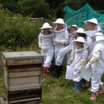 BUZZING: Children from across the county will visit the apiary and learn about bees