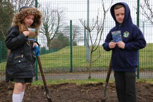 Joseph Williams and Seren Hudson from year 3 – representatives of the Pupil Council in charge of the spring flower planting project.