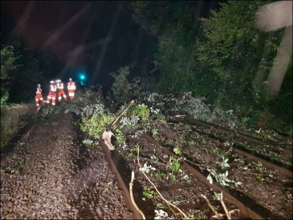 Two passengers were taken to hospital after a train hit a tree on the line near Llanbradach. Photo: British Transport Police