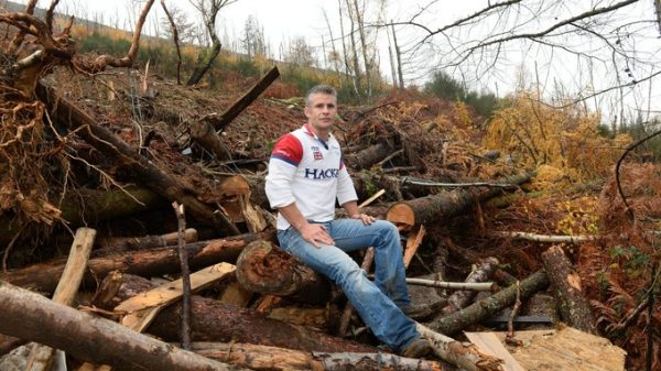 Ex-lance corporal Mike Allen, 37, and the remains of his log cabin