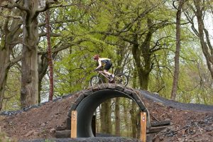 A tunnel like this one could be used for the planned new trail at Cwmcarn Forest