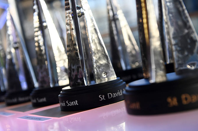 Nominations for the St David Awards are now open