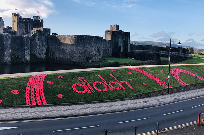 A poppy display has been set up on the banks of Caerphilly Castle