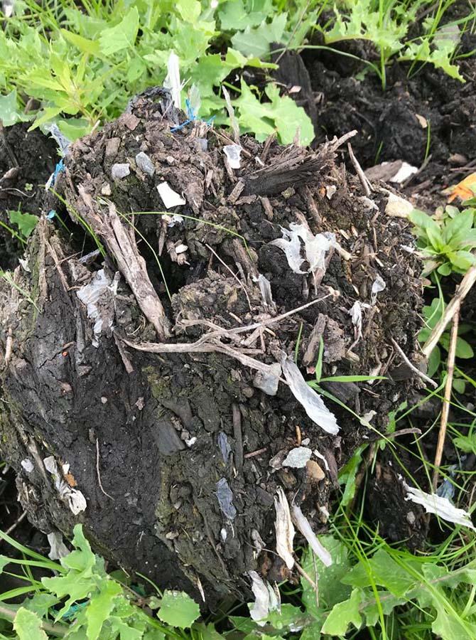Plastic pollution at the bund, near Gelligaer