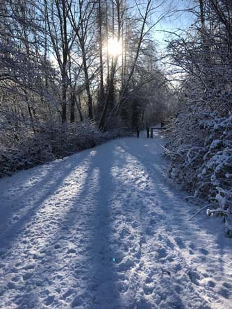 Snow along the Aber Valley cycle path