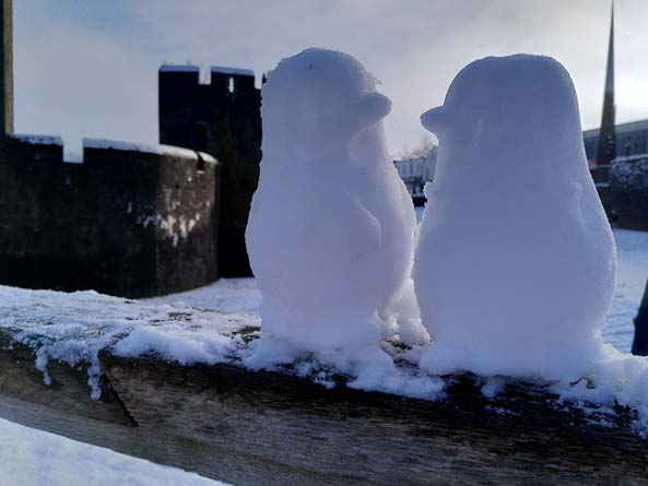 Snow penguins spotted near Caerphilly Castle